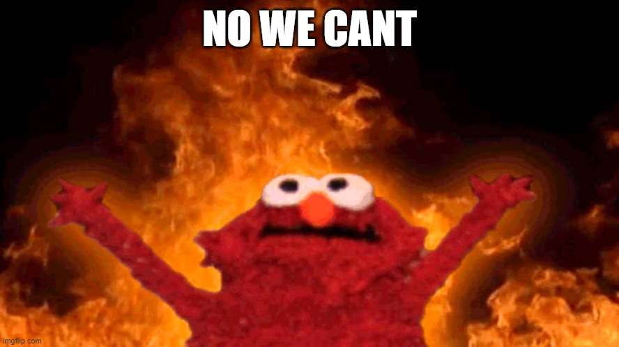 elmo fire | NO WE CANT | image tagged in elmo fire | made w/ Imgflip meme maker