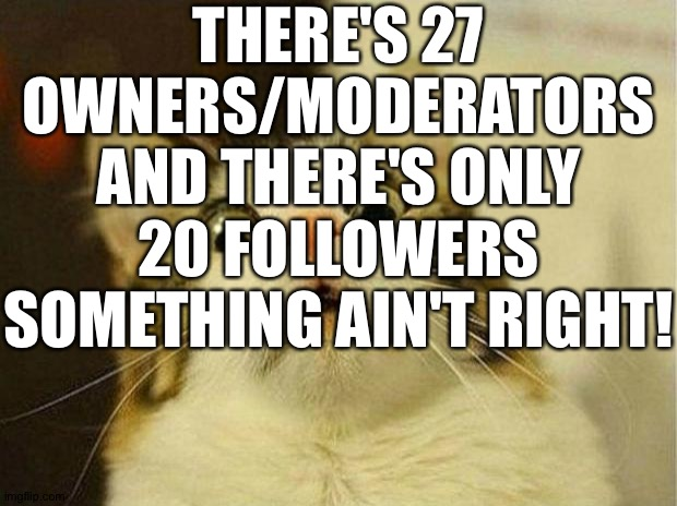 Y'all start following please?! |  THERE'S 27 OWNERS/MODERATORS AND THERE'S ONLY 20 FOLLOWERS SOMETHING AIN'T RIGHT! | image tagged in memes,scared cat | made w/ Imgflip meme maker