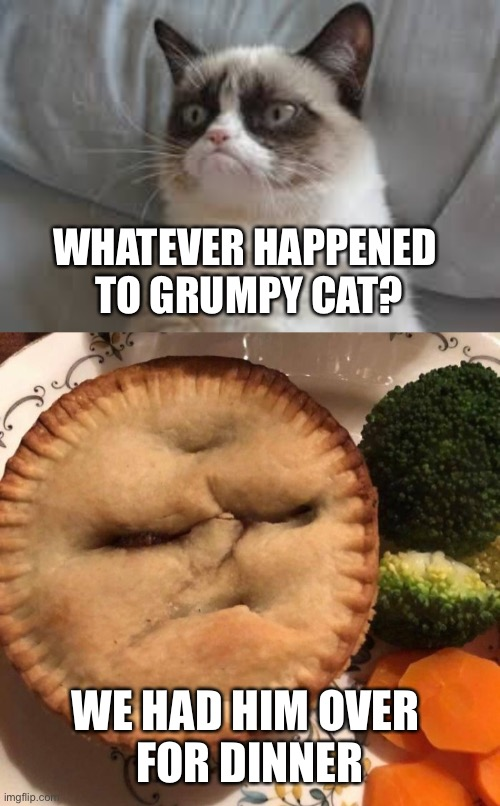 Life of Pi: Where Are They Now |  WHATEVER HAPPENED  TO GRUMPY CAT? WE HAD HIM OVER  FOR DINNER | image tagged in grumpy cat,life of pi,pie,where are they now,dinner | made w/ Imgflip meme maker
