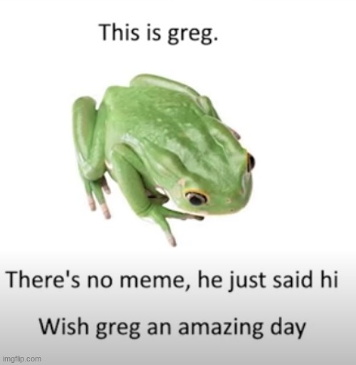 This is Greg | image tagged in good guy greg,frog | made w/ Imgflip meme maker