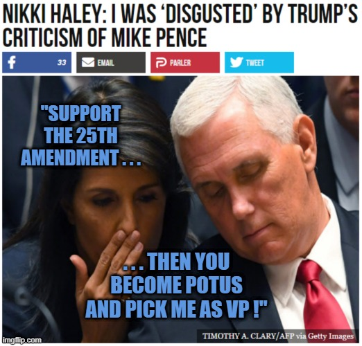 """""""SUPPORT THE 25TH AMENDMENT . . . . . . THEN YOU BECOME POTUS AND PICK ME AS VP !"""" 