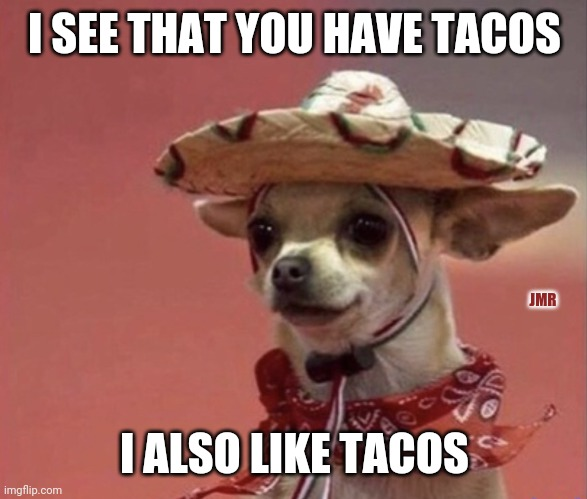 Yes Please |  I SEE THAT YOU HAVE TACOS; JMR; I ALSO LIKE TACOS | image tagged in chihuahua in sumbrero,tacos | made w/ Imgflip meme maker