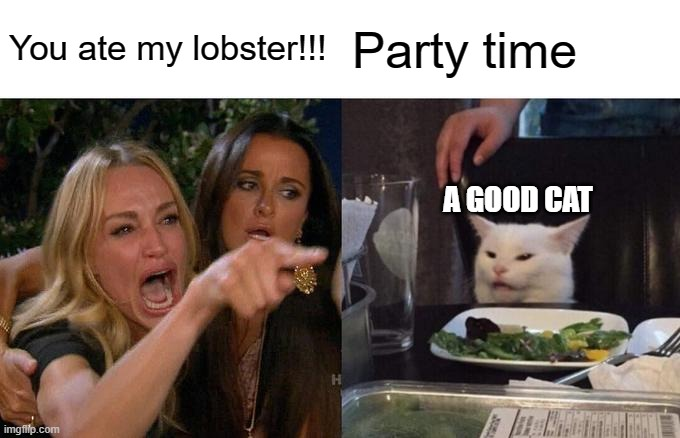 Woman Yelling At Cat |  You ate my lobster!!! Party time; A GOOD CAT | image tagged in memes,woman yelling at cat | made w/ Imgflip meme maker