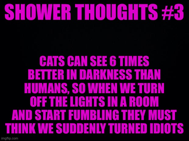 Shower thoughts #3 |  SHOWER THOUGHTS #3; CATS CAN SEE 6 TIMES BETTER IN DARKNESS THAN HUMANS, SO WHEN WE TURN OFF THE LIGHTS IN A ROOM AND START FUMBLING THEY MUST THINK WE SUDDENLY TURNED IDIOTS | image tagged in black background | made w/ Imgflip meme maker