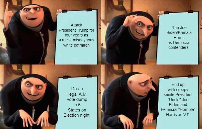 "Gru's Plan |  Attack President Trump for four years as a racist misogynous white patriarch; Run Joe Biden/Kamala Harris as Democrat contenders. End up with creepy senile President ""Uncle"" Joe Biden and Feminazi ""Horrible"" Harris as V.P. Do an illegal A.M. vote dump in 6 States on Election night. 