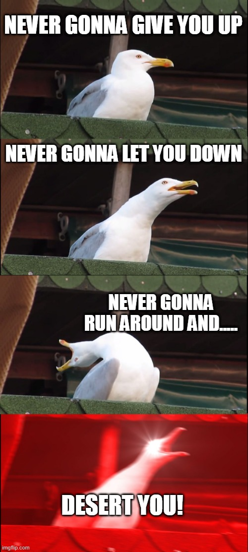 get rickrolled lol |  NEVER GONNA GIVE YOU UP; NEVER GONNA LET YOU DOWN; NEVER GONNA RUN AROUND AND..... DESERT YOU! | image tagged in memes,inhaling seagull,rickrolling | made w/ Imgflip meme maker
