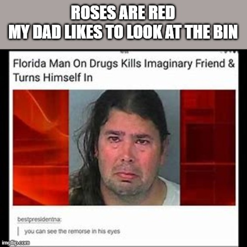 Florida man |  ROSES ARE RED MY DAD LIKES TO LOOK AT THE BIN | image tagged in news | made w/ Imgflip meme maker