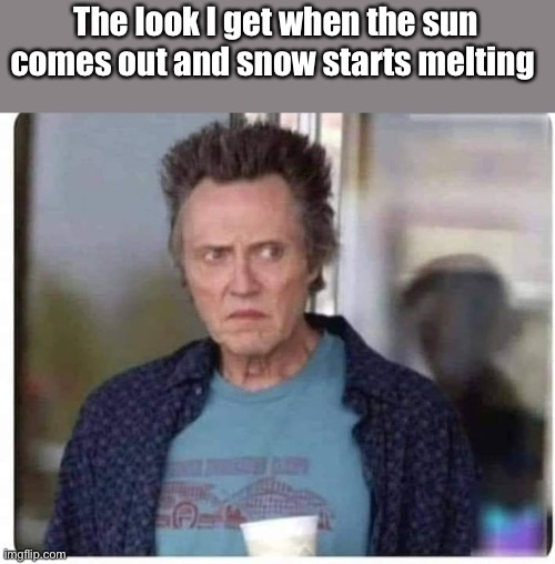 Walken in a Winter Wonderland |  The look I get when the sun comes out and snow starts melting | image tagged in christopher walken,snow,melt | made w/ Imgflip meme maker