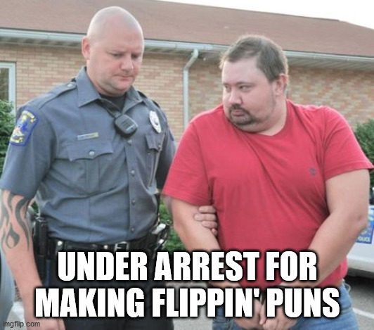 man get arrested | UNDER ARREST FOR MAKING FLIPPIN' PUNS | image tagged in man get arrested | made w/ Imgflip meme maker