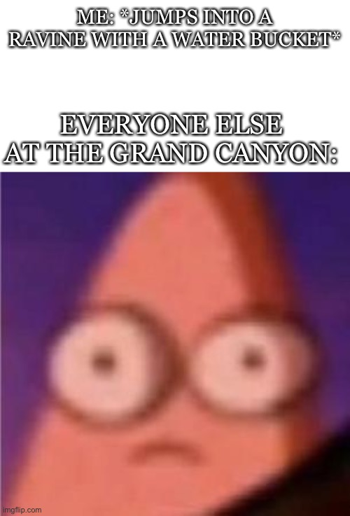 oh well |  ME: *JUMPS INTO A RAVINE WITH A WATER BUCKET*; EVERYONE ELSE AT THE GRAND CANYON: | image tagged in eyes wide patrick | made w/ Imgflip meme maker