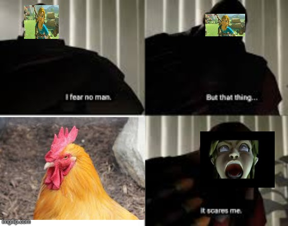 i fear no man | image tagged in legend of zelda,the legend of zelda breath of the wild | made w/ Imgflip meme maker