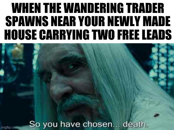 they spawn out of nowhere |  WHEN THE WANDERING TRADER SPAWNS NEAR YOUR NEWLY MADE HOUSE CARRYING TWO FREE LEADS | image tagged in minecraft | made w/ Imgflip meme maker