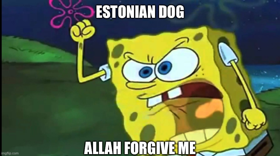 By allah |  ESTONIAN DOG; ALLAH FORGIVE ME | made w/ Imgflip meme maker
