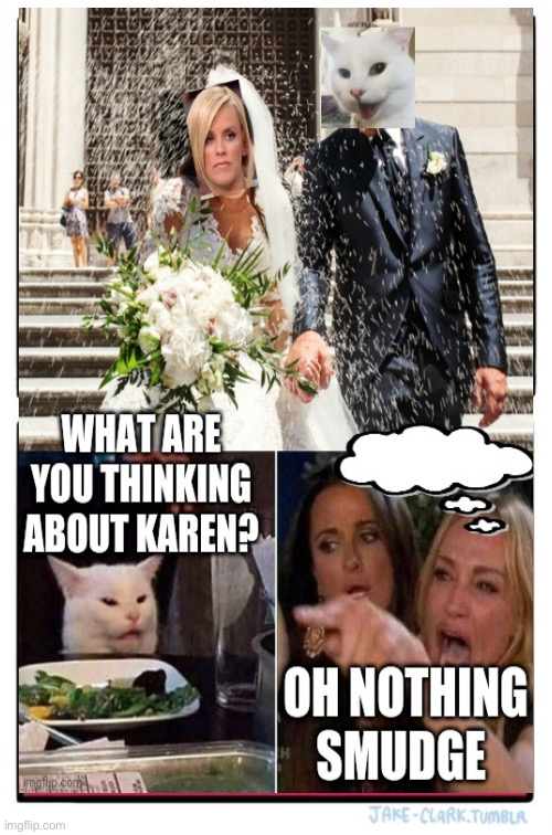 image tagged in karen,smudge the cat,wedding,woman yelling at cat,fun,memes | made w/ Imgflip meme maker