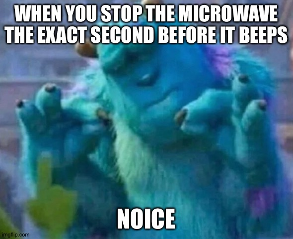 Sullivan Perfect ?? |  WHEN YOU STOP THE MICROWAVE THE EXACT SECOND BEFORE IT BEEPS; NOICE | image tagged in sullivan perfect | made w/ Imgflip meme maker