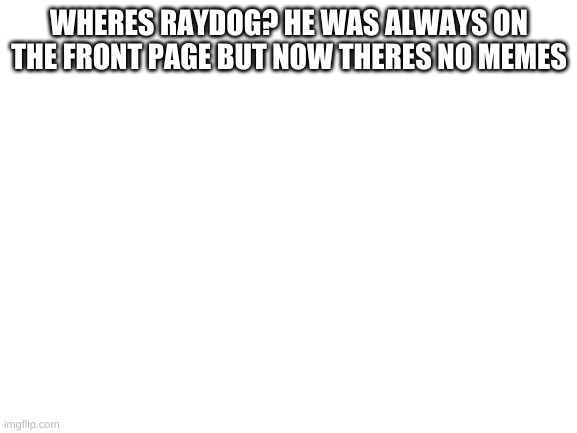 raydog |  WHERES RAYDOG? HE WAS ALWAYS ON THE FRONT PAGE BUT NOW THERES NO MEMES | image tagged in blank white template | made w/ Imgflip meme maker