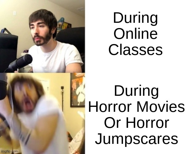 Im Not Here to work. Im Here to SCREAM |  During Online Classes; During Horror Movies Or Horror Jumpscares | image tagged in penguinz0,horror movie,horror,online school,online classes,scream | made w/ Imgflip meme maker
