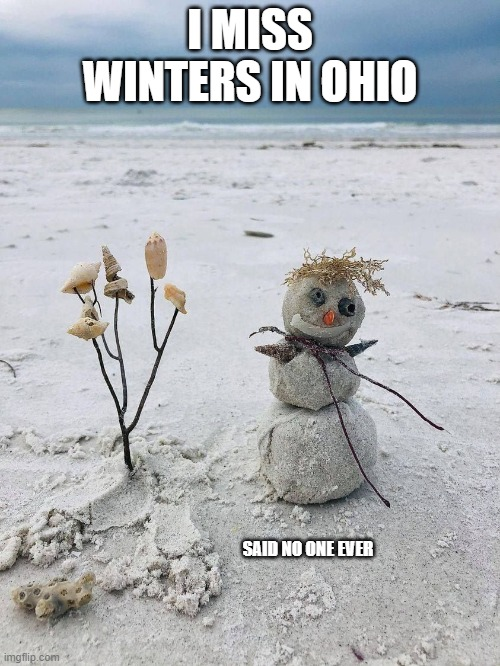 Sandman |  I MISS WINTERS IN OHIO; SAID NO ONE EVER | image tagged in winter on the beach,snowman,ohio | made w/ Imgflip meme maker