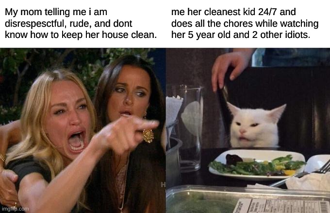 my life in a nutshell |  My mom telling me i am disrespesctful, rude, and dont know how to keep her house clean. me her cleanest kid 24/7 and does all the chores while watching her 5 year old and 2 other idiots. | image tagged in memes,woman yelling at cat | made w/ Imgflip meme maker