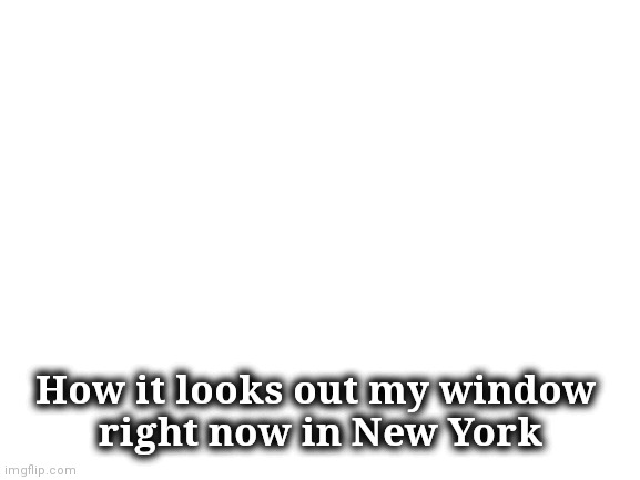Blank White Template | How it looks out my window  right now in New York | image tagged in blank white template | made w/ Imgflip meme maker