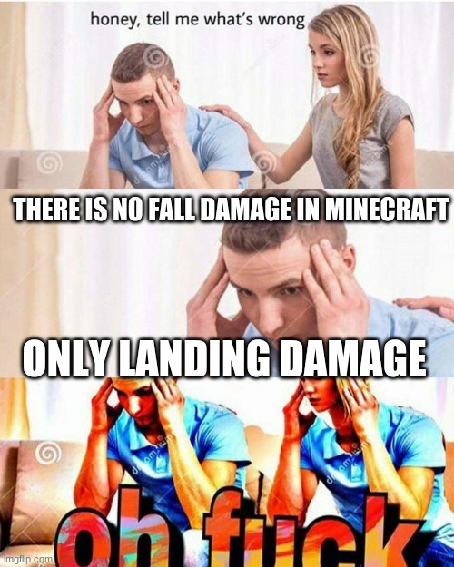 Just think about it.... |  THERE IS NO FALL DAMAGE IN MINECRAFT; ONLY LANDING DAMAGE | image tagged in honey tell me what's wrong | made w/ Imgflip meme maker