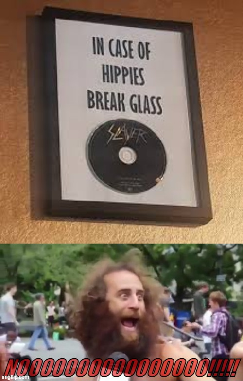 NOOOOOOOOOOOOOOOO!!!!! | image tagged in new age hippy,slayer,metal memes | made w/ Imgflip meme maker