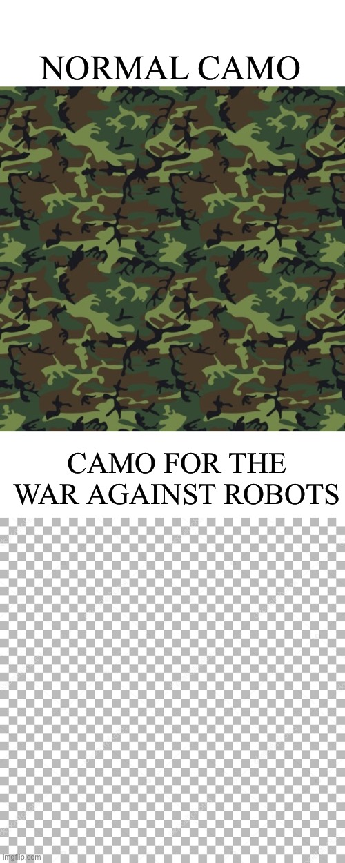 Very well hidden |  NORMAL CAMO; CAMO FOR THE WAR AGAINST ROBOTS | image tagged in memes,camo,camouflage,war | made w/ Imgflip meme maker
