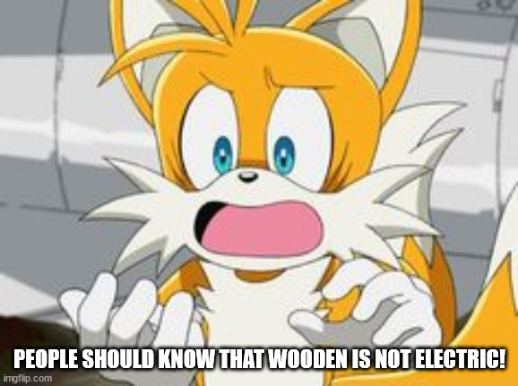 PEOPLE SHOULD KNOW THAT WOODEN IS NOT ELECTRIC! | made w/ Imgflip meme maker