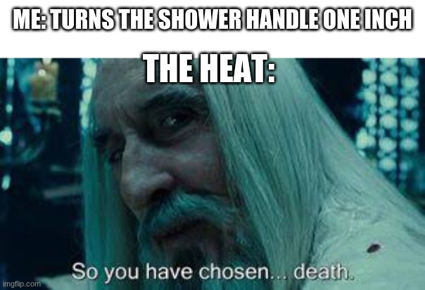 BRO EVERY TIME |  ME: TURNS THE SHOWER HANDLE ONE INCH; THE HEAT: | image tagged in shower,funny,memes,so you have chosen death,lord of the rings | made w/ Imgflip meme maker