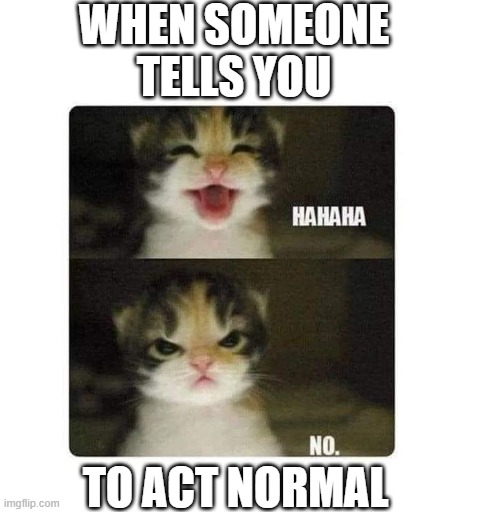 WHEN SOMEONE TELLS YOU; TO ACT NORMAL | image tagged in be yourself | made w/ Imgflip meme maker
