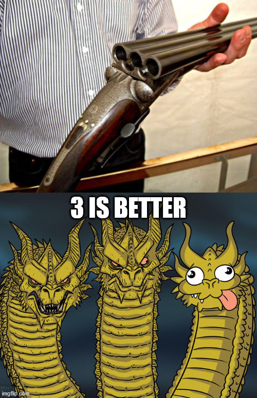 3 IS BETTER | image tagged in three-headed dragon,firearms | made w/ Imgflip meme maker