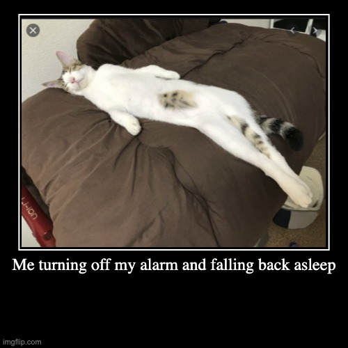 Me turning off my alarm and falling back asleep | | image tagged in funny,demotivationals | made w/ Imgflip demotivational maker