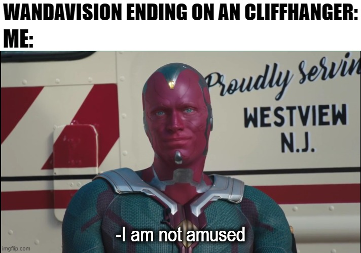 I really am not |  ME:; WANDAVISION ENDING ON AN CLIFFHANGER:; -I am not amused | image tagged in wandavision,wanda,marvel | made w/ Imgflip meme maker