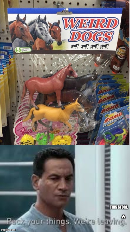 What in the- |  THIS STORE. ^ | image tagged in pack your things we're leaving,weird dogs,horse | made w/ Imgflip meme maker
