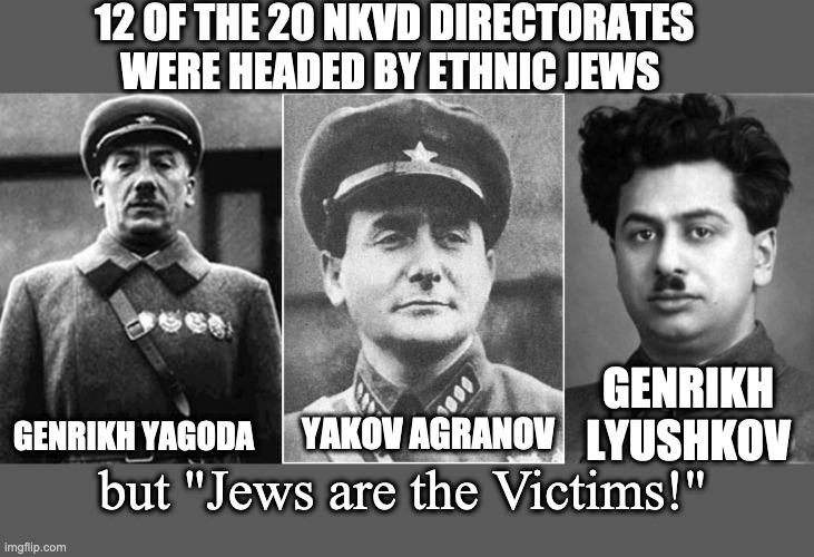 "History of Jewish Sodliers |  12 OF THE 20 NKVD DIRECTORATES WERE HEADED BY ETHNIC JEWS; GENRIKH LYUSHKOV; YAKOV AGRANOV; GENRIKH YAGODA; but ""Jews are the Victims!"" 