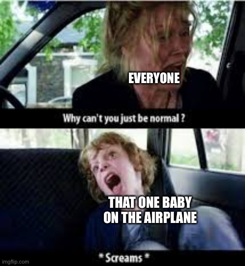 True |  EVERYONE; THAT ONE BABY ON THE AIRPLANE | image tagged in why cant you just be normal | made w/ Imgflip meme maker