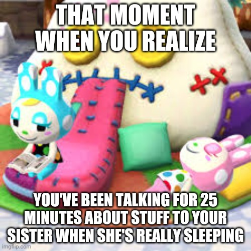 Sister meme |  THAT MOMENT WHEN YOU REALIZE; YOU'VE BEEN TALKING FOR 25 MINUTES ABOUT STUFF TO YOUR SISTER WHEN SHE'S REALLY SLEEPING | image tagged in animal crossing | made w/ Imgflip meme maker