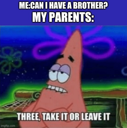 Three, Take it or leave it |  ME:CAN I HAVE A BROTHER? MY PARENTS: | image tagged in three take it or leave it | made w/ Imgflip meme maker