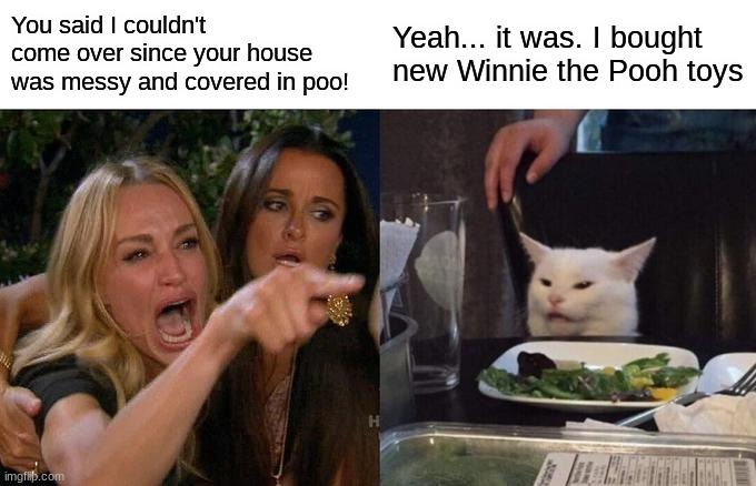 Aah, I love homophones :) |  You said I couldn't come over since your house was messy and covered in poo! Yeah... it was. I bought new Winnie the Pooh toys | image tagged in memes,woman yelling at cat,winnie the pooh,confusion,sadness | made w/ Imgflip meme maker