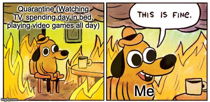 This Is Fine Meme |  Quarantine (Watching TV, spending day in bed, playing video games all day); Me | image tagged in memes,this is fine | made w/ Imgflip meme maker