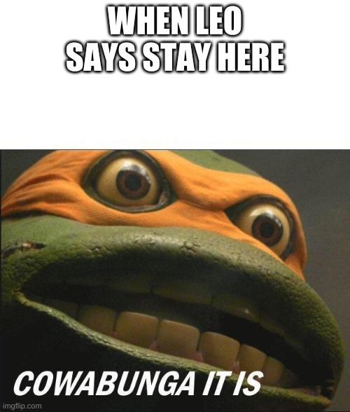 Cowabunga It Is |  WHEN LEO SAYS STAY HERE | image tagged in cowabunga it is | made w/ Imgflip meme maker