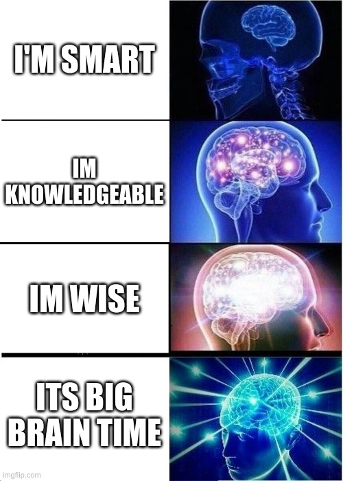 Expanding Brain Meme |  I'M SMART; IM KNOWLEDGEABLE; IM WISE; ITS BIG BRAIN TIME | image tagged in memes,expanding brain | made w/ Imgflip meme maker