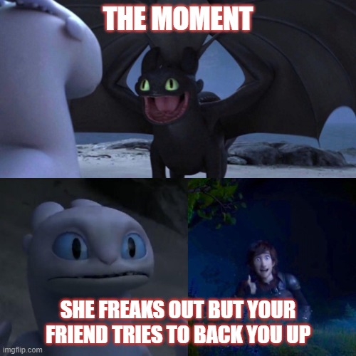 night fury |  THE MOMENT; SHE FREAKS OUT BUT YOUR FRIEND TRIES TO BACK YOU UP | image tagged in night fury | made w/ Imgflip meme maker