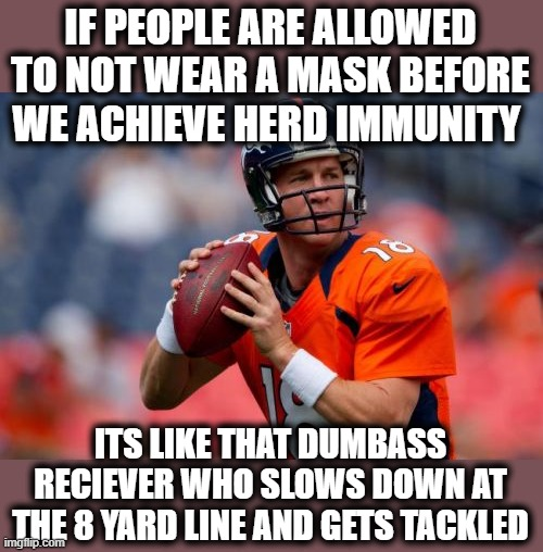 Lets get the TD! |  IF PEOPLE ARE ALLOWED TO NOT WEAR A MASK BEFORE WE ACHIEVE HERD IMMUNITY; ITS LIKE THAT DUMBASS RECIEVER WHO SLOWS DOWN AT THE 8 YARD LINE AND GETS TACKLED | image tagged in memes,coronavirus,covid-19,covid,wear a mask,football | made w/ Imgflip meme maker