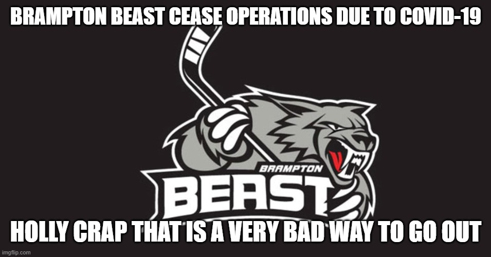 hockey |  BRAMPTON BEAST CEASE OPERATIONS DUE TO COVID-19; HOLLY CRAP THAT IS A VERY BAD WAY TO GO OUT | image tagged in hockey | made w/ Imgflip meme maker
