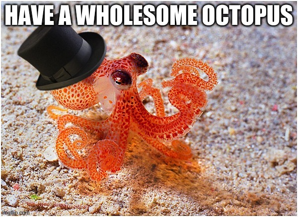 Octopus with top hat |  HAVE A WHOLESOME OCTOPUS | image tagged in octopus with top hat | made w/ Imgflip meme maker