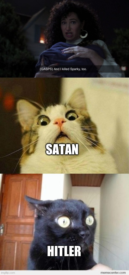 And now you have officially carried it too far, Agatha. |  SATAN; HITLER | image tagged in memes,scared cat,wandavision | made w/ Imgflip meme maker