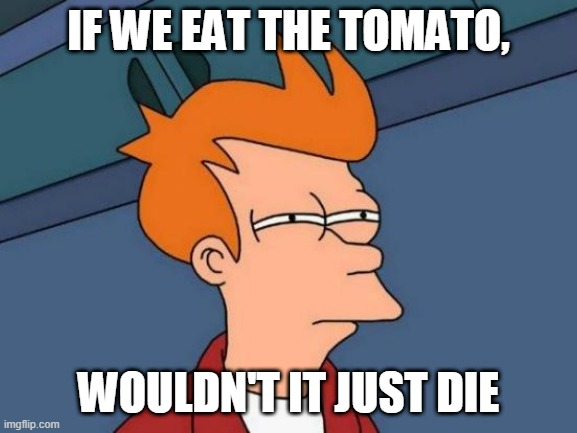 Futurama Fry Meme | IF WE EAT THE TOMATO, WOULDN'T IT JUST DIE | image tagged in memes,futurama fry | made w/ Imgflip meme maker