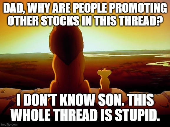 Lion King Meme |  DAD, WHY ARE PEOPLE PROMOTING OTHER STOCKS IN THIS THREAD? I DON'T KNOW SON. THIS WHOLE THREAD IS STUPID. | image tagged in memes,lion king | made w/ Imgflip meme maker