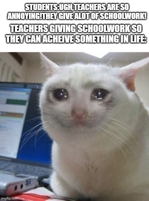 Crying cat |  STUDENTS:UGH,TEACHERS ARE SO ANNOYING!THEY GIVE ALOT OF SCHOOLWORK! TEACHERS GIVING SCHOOLWORK SO THEY CAN ACHEIVE SOMETHING IN LIFE: | image tagged in crying cat,teacher,annoying | made w/ Imgflip meme maker